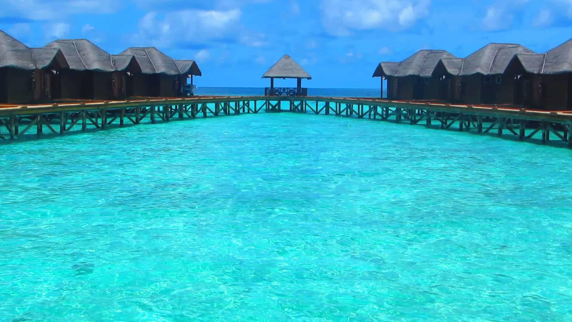 Islas maldivas el lugar perfecto para una luna de miel for Islas maldivas hoteles en el agua