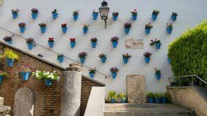 Patios de Córdoba-Interior