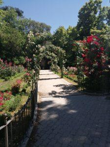 Jardines y arco de rosas de Campo Grande