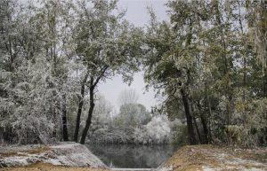 Parque de la Ribera de Castilla en invierno